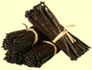 220 Pounds / 100 Kilograms Vanilla Beans